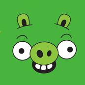 Dámské tričko s potiskem - Green pig green