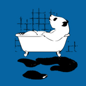 Pánské tričko s potiskem - Panda blue