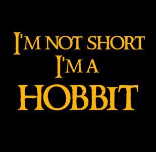 Pánské tričko s potiskem I'm not short I'm not hobbit