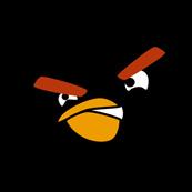 Pánské tričko s potiskem - Black bird black