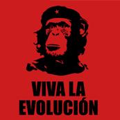 Dámské tričko s potiskem - Viva la evolucion red