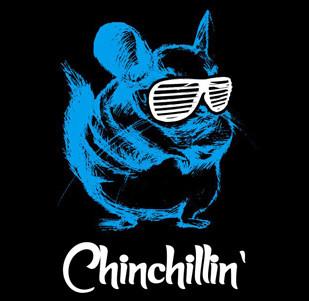 Pánské tričko s potiskem - Chinchillin